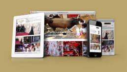 Cordon Press | Diseño de campaña de email marketing para la promoción de la venta de las fotografías de la fiesta de San Fermín 2018